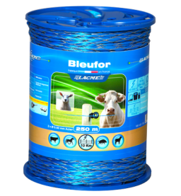 Bleufor
