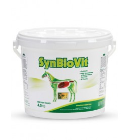 SynBioVit